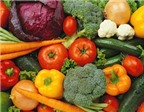 Cách lựa chọn bảo quản thức ăn ngày Tết