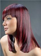 Thi tạo mẫu tóc theo phong cách Pháp
