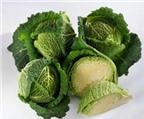 Tác dụng chữa bệnh của rau bắp cải