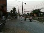 Hiểm họa trên đường