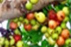 Những cây 'nêm nếm' có tác dụng chữa bệnh