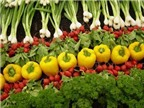 Chất chống oxy hoá, beta- caroten, thực phẩm dùng kỹ thuật sinh học với bệnh ung thư