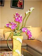 Nhiều loại hoa độc đáo tặng thầy cô
