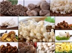 Cảm nhận tinh hoa ẩm thực tại Ashima