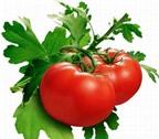 Ăn cà chua lợi tim mạch, ngừa ung thư