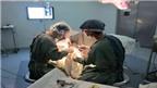 Tạo hình bàng quang từ ruột non bằng phương pháp mới