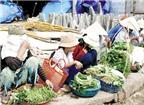 Nguy cơ trong khẩu phần ăn của trẻ ở HN: Nhiều loại thực phẩm nhiễm chì