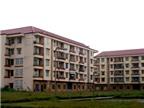 Đà Nẵng: Nhiều giải pháp lo nhà cho người thu nhập thấp