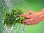 Cách phòng tránh ngộ độc thực phẩm trong ngày hè