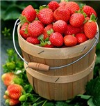 5 nhóm thực phẩm giúp da chống nắng