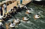 Thú vị đua thuyền bằng bồn tắm