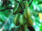 Trồng cây ăn quả thật hữu ích