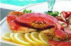 Mẹo ăn cua biển không bị đau bụng