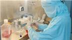 Tế bào gốc tái tạo có gây ung thư?