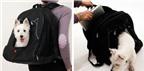 Túi đựng laptop phong cách (tiếp)