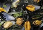 Đặc sản trai sò từ Bỉ