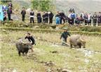 Độc đáo lễ hội xuống đồng dưới chân núi Phan Si Păng