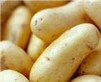 Bí kíp chế biến khoai tây đúng cách
