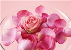 Các bài thuốc từ hoa hồng và hồng hoa