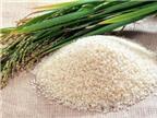 Gạo nếp chữa bệnh tiểu đường