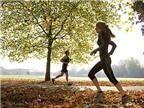 Không tập thể dục liệu có thể giảm béo?