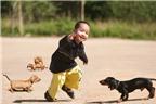 Biện pháp ngăn ngừa chó cắn trẻ