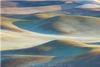 Bảng màu độc đáo trên đồng cỏ ở Hoa Kỳ
