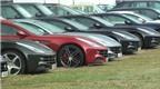 Chuyện hiếm: 11 siêu xe Ferrari FF dàn hàng ngang