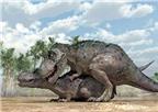 Tìm hiểu cách giao phối của khủng long
