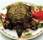 Món ăn từ rùa bổ thận, tư âm