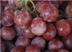 Làm sao để chọn mua trái cây ngon?