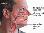 Dùng thuốc trị viêm mũi, chớ tưởng dễ