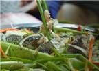 Những món ngon từ cá lóc