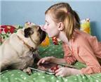 Hôn cún cưng dễ mắc bệnh răng miệng