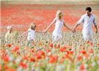 7 mẹo phong thủy giúp tổ ấm hạnh phúc