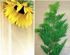 Cắm hoa hướng dương giản dị, tự nhiên