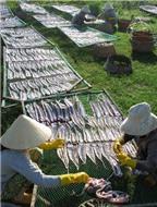 Đặc sản khô cá đéc