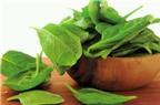 Rau bina – thực phẩm xanh đa năng