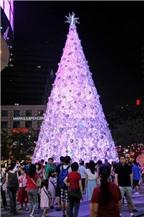 Những cây thông Noel độc đáo đến kỳ quặc