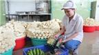 Đặc sản tết Việt xuất ngoại
