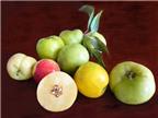 Giấm táo mèo giúp bé trị đau họng