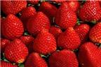 Làm đẹp với những trái cây màu đỏ ngày Tết