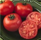 14 mẹo dưỡng da hoàn hảo từ cà chua