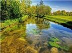 Cảnh tượng tuyệt đẹp dưới những dòng sông 'trinh nữ'