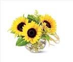 Chào hè với 6 cách cắm hoa hướng dương tươi đẹp