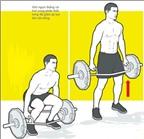 Deadlift: Bài tập cơ bắp hiệu quả và đơn giản