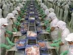 Hoa Kỳ: Những quy định về an toàn thực phẩm