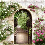 Những hướng cổng tốt theo quan niệm phong thủy