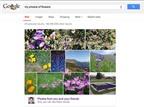 Google Search bổ sung tính năng tìm nhanh ảnh cá nhân