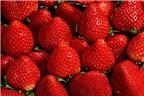 Rau quả màu sắc chống ung thư